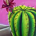 Stargazer Cactus by Karen Aune