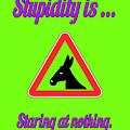 Staring Bigstock Donkey 171252860 by Mitchell Watrous