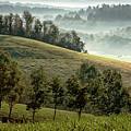 Stark Ridge Morning by Randall Evans