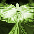 Starlight Angel - Green by Artistic Mystic