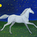 Starry Night In August by Anna Folkartanna Maciejewska-Dyba