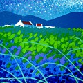 Starry Night In Wicklow by John  Nolan