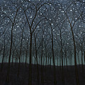 Starry Trees by James W Johnson