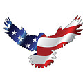 Stars And Striped Eagle by Ricky Barnard