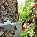 Stars Around Tree 1 by Korynn Neil