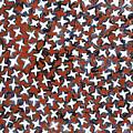 Stars by Joan De Bot