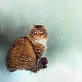 Starting To Snow Again by Theresa Tahara
