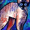 Startled Cornish Rex Cat by Svetlana Novikova