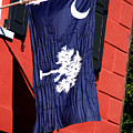 State Flag Of South Carolina by Susanne Van Hulst