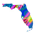 State Of Florida Map Rainbow Splash Fractal by Rose Santuci-Sofranko