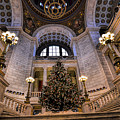 Stately Christmas Tree by Melissa Hicks