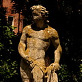 Statue In The Garden In Venice by Michael Henderson