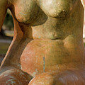 Statue In The Nude by Kathleen K Parker