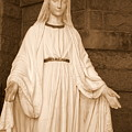 Statue Of Mary At Sacred Heart In Tampa by Carol Groenen