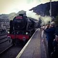 Steam Train, Ffestiniog, North Wales by Samuel Pye