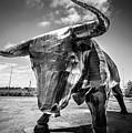 Steel Bull Statue by Gary Gillette