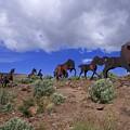 Steel Horses by Rick Takagi
