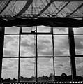 Steel Window by Gerard Yates