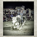 Steer Buck Out _c by Walter Herrit