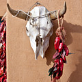 Steer Skull In Santa Fe by Art Block Collections