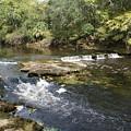 Steinhatchee Falls by Debbie May