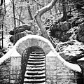 Steps Along The Wissahickon by Bill Cannon