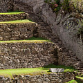 Steps And Terraces by Bob Phillips