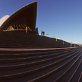 Steps At Sydney Opera House by Carl Purcell