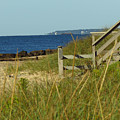 Steps Away From The Ocean by Donna Cavanaugh