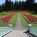 Steps To Duncan Garden by Carol Groenen