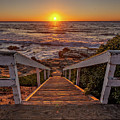 Steps To The Sun  by Peter Tellone