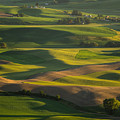 Steptoe Butte 6 by Tracy Knauer