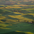 Steptoe Butte 9 by Tracy Knauer