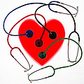 Stethoscopes And Plastic Heart by Voisin/Phanie