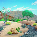 Steve's Yard  by Snake Jagger