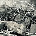 Sticks And Stones 2782 by Ken DePue