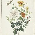 Still Life Of Flowers, Machtelt Moninckx, C. 1600 - C. 1687 by MotionAge Designs