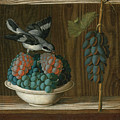 Still Life Of Grapes With A Gray Shrike by Antonio Leonelli