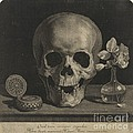 Still Life With A Skull And A Vase Of Roses by Jean Morin