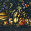 Still Life With Melons Apples Cherries Figs And Grapes On A Stone Ledge by Roman School