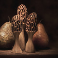 Still Life With Mushrooms And Pears I by Tom Mc Nemar