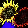 Still Life With Summer Flowers #1. by Alexander Vinogradov