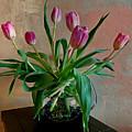 Still Life With Tulips by Barbara Zahno