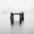 Stillnes In Motion by Ilco Trajkovski