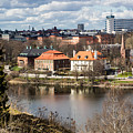 Stockholm From Skansen by Suzanne Luft