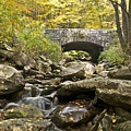 Stone Bridge 6063 by Michael Peychich