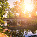 Stone Bridge by Sophie McAulay