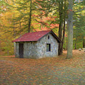 Stone Building In Autumn by Kathleen Rinker