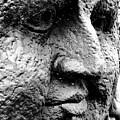 Stone Face by Alex Santos