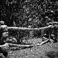 Stone Fence B by John Myers